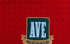 Brisače z vezenim logotipom